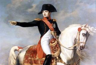 Napoleonshorse